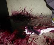 Crimescene (2011)